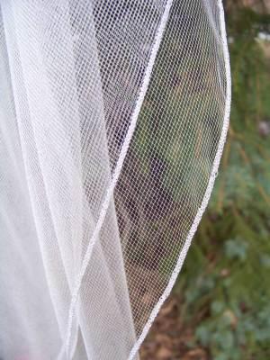 Long silver pencil edge veil