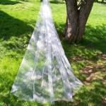 1 tier long veil at full width