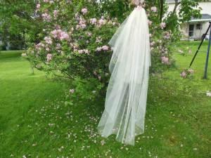 Waltz length veil