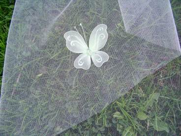 green butterfly with crystals
