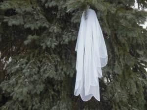 true scalloped edge English net waterfall veil