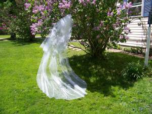 traditional long veil with crystals