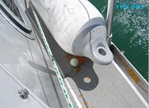 jauneoeuf-1-300x219 Überraschungsei vorwaerts  Uberraschung Segelboot ei Bodensee aluminium