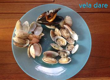 Fruits de mer de Galice