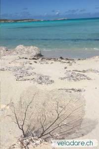 Strand in Jumentos Cays, Bahamas
