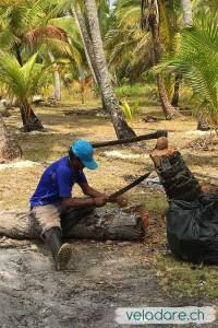 Préparation de noix de coco