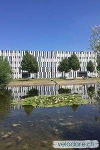 Liebefeld Park