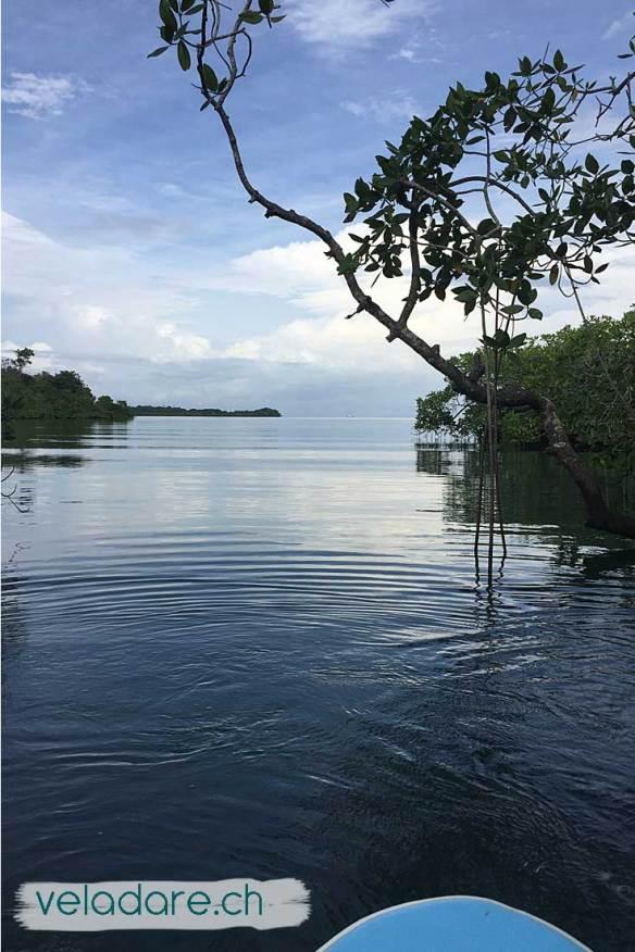 Isla Ampon (Inseln Las Perlas, Panama)