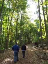 Alligator Hill trail