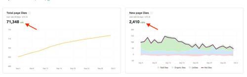 social-media-poster-analytics