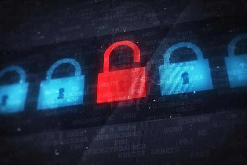 Protege los datos
