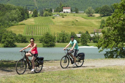 Cyclistes  sur la ViaRhôna à proximité de Seyssel. Photo Martelet