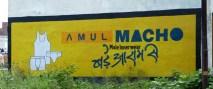 Qui veut devenir un vrai homme, un macho?, Inde