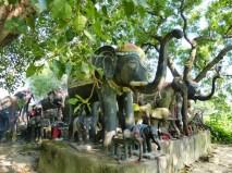 En honneur a Ganesh, Nepal