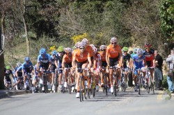 Carrots chasing! (image courtesy of Susi Goetze CyclingInside)