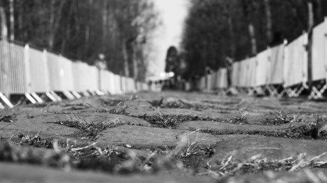 Cobbles Roubaix CREDIT: JON BAINES