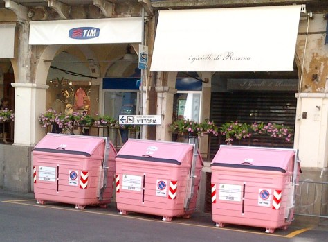 Pink refuse bins and the town was bedecked with pink flowers (image: Sheree)