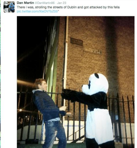 Dan Martin panda 1