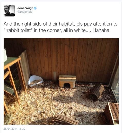 Jens Rabbit 3