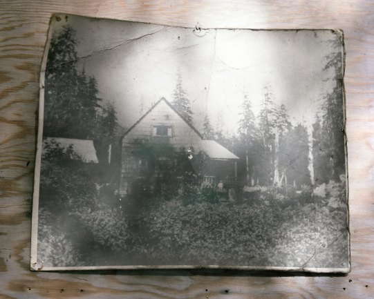 Ashby's place, the site of Doug's first home in the forest