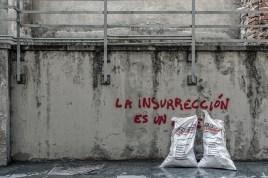 La insurrección es un… (7)
