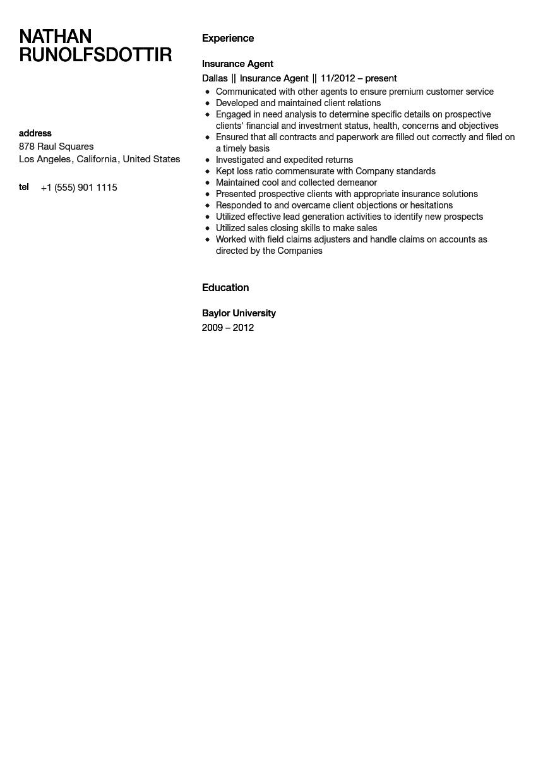 Insurance Agent Resume Sample Velvet Jobs
