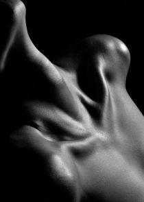 neck arteries