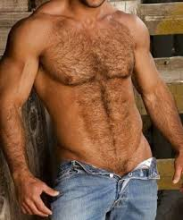 hairy chest 2