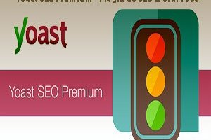 Yoast SEO Premium - Plugin de SEO WordPress-1