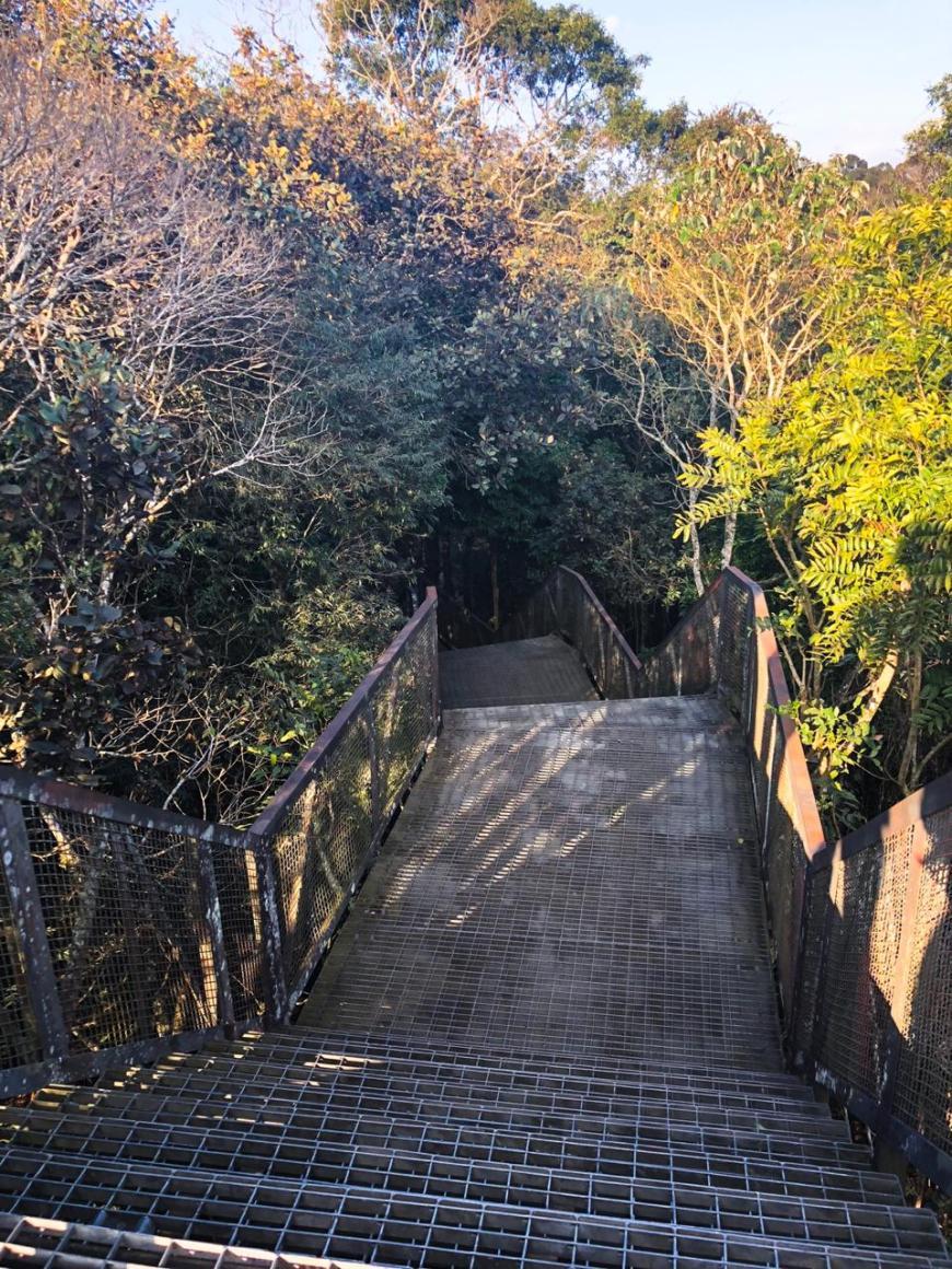 escada para o mirante parque passaúna