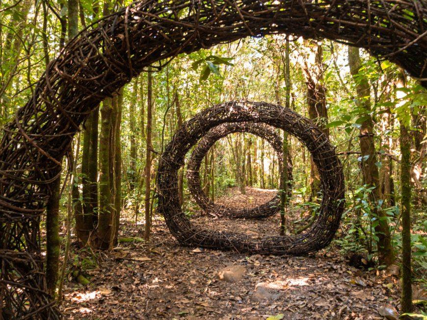espiral de galhos de arvore em meio a trilha