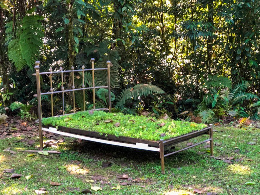 cama de grama no ekoa park