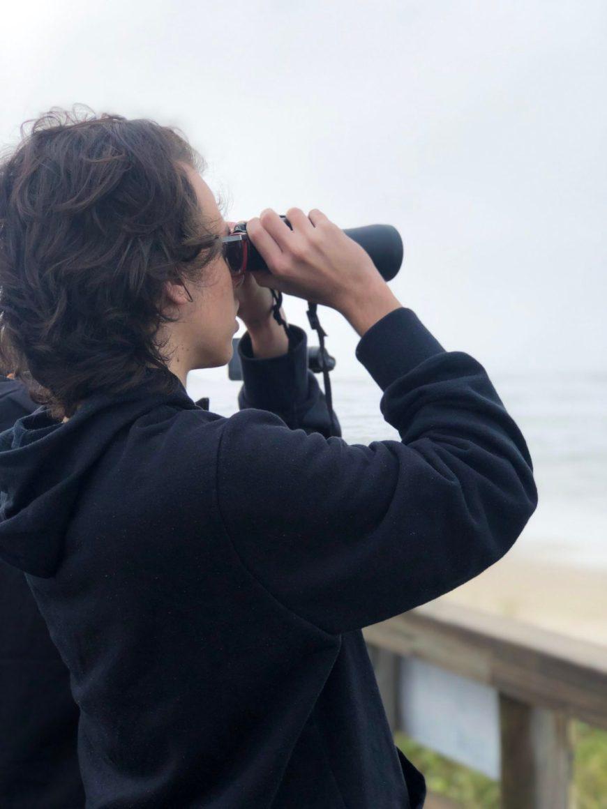 observando baleias de binoculo
