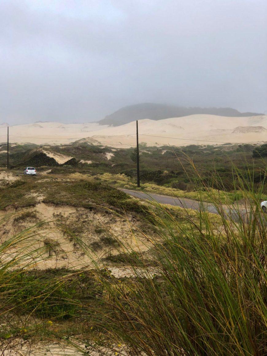 observação de baleias próximo as dunas