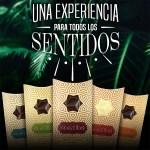 Combo de tabletas de chocolate RUSTIKA
