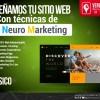 VenCreativa, diseño web, pagina web, dominio, hosting,