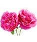rosenolje