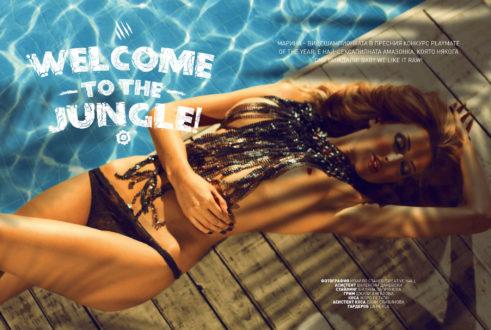 Playboy, Esquire, Maxim magazine designs 57