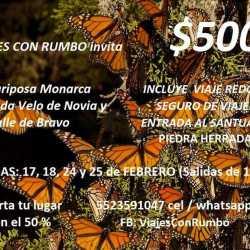 Viaje Mariposa Monarca, Cascada Velo de Novia y Valle de Bravo.