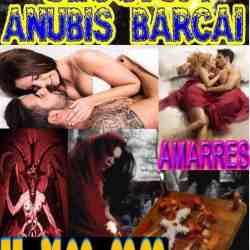 Anubis8