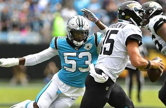 Panthers offseason