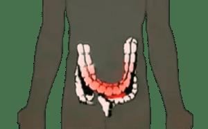Desintoxicación del colon