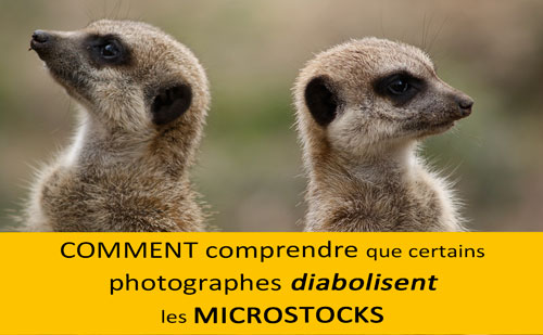 Contre les microstocks | Vendre ses photos en ligne