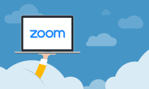 <b>Zoom seminars/meetings for those who want to know about VendShare</b>
