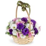 Eustoma Mix Amazing Color 25 Flower, Venera Flowers, online flower delivery dubai