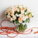 Ohara Rose Peach And White Rose 40 Flower, Venera Flowers, online flower delivery dubai