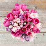 Tulip Pink And Purple 55 Flower, Venera Flowers, online flower delivery dubai