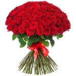 Rose20Red20Flower206920Stem20Venera20Flowers 1