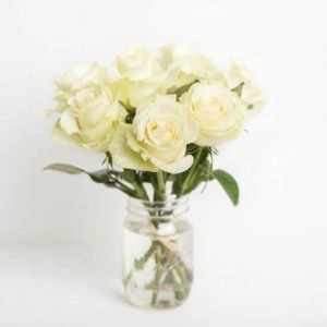 Rose20White20Vase20720Flower20Venera20Flowers201 1