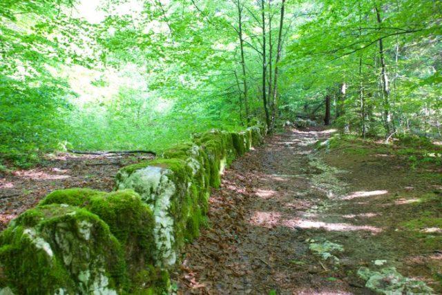 sentiero fogazzariano tonezza